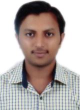 Rahul S Cholkhe